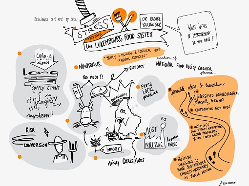 Illustraion Resilience of the Food System Luxembourg